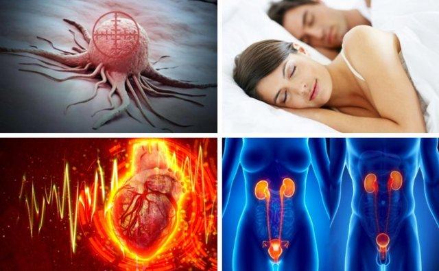 Грузди: польза и вред для организма человека