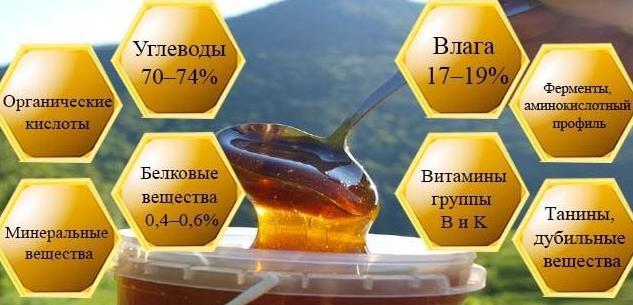 Горный мед: полезные свойства и противопоказания