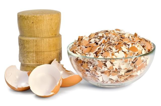 Яичная скорлупа: польза и вред для здоровья