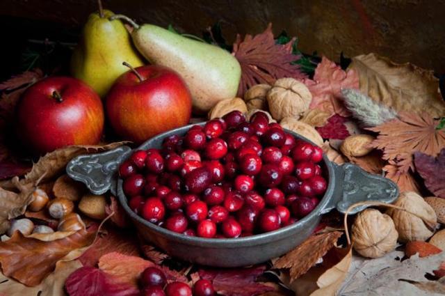Клюква: польза и вред для здоровья организма