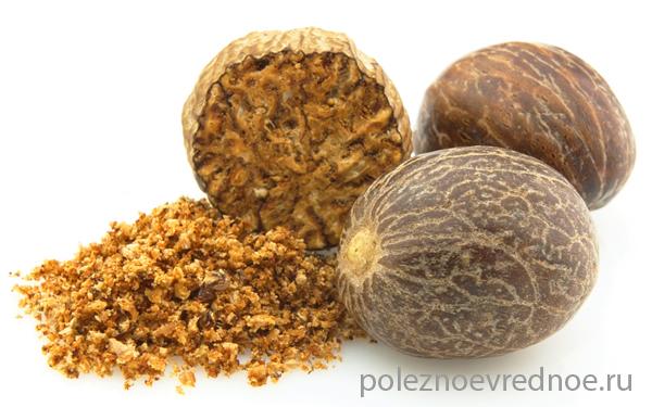 Бразильский орех: польза и вред для организма