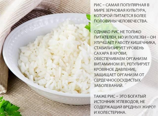Рисовая мука: польза и вред для организма