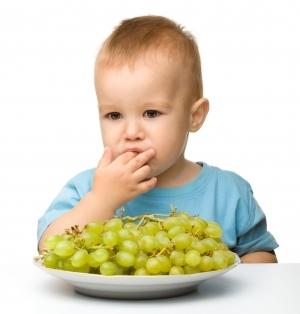 Виноград: польза и вред для организма человека