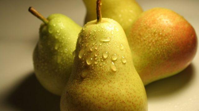 Груша: польза и вред для здоровья организма
