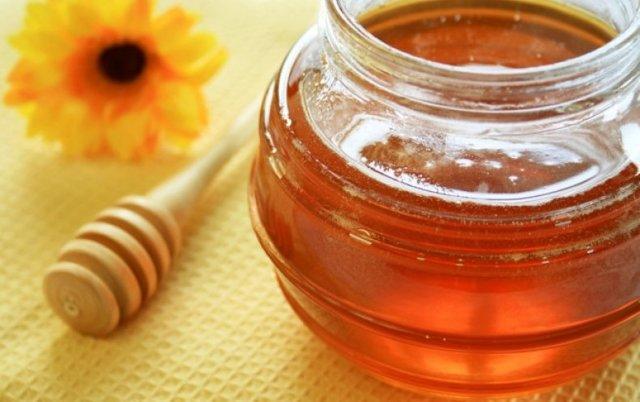 Полезен ли мед подсолнечника