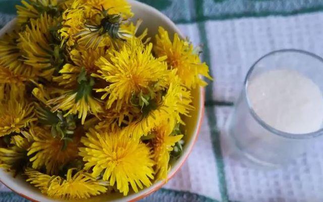 Варенье из одуванчиков: 13 рецептов