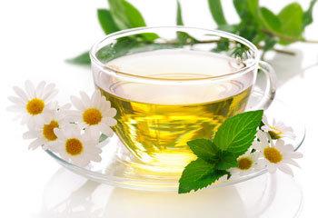 Ромашковый чай: польза и вред для здоровья