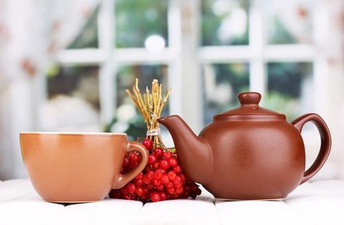 Чай с калиной: польза и вред для здоровья