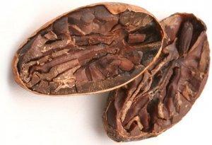 Какао-бобы: польза и вред для здоровья